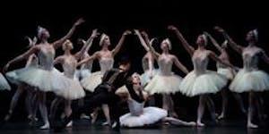 Swan Lake Dreams Audition - Plymouth