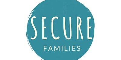 Secure Families Volunteer Training
