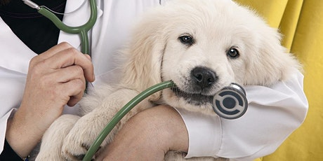 Veterinary Assistant Program Information Session - Free tickets