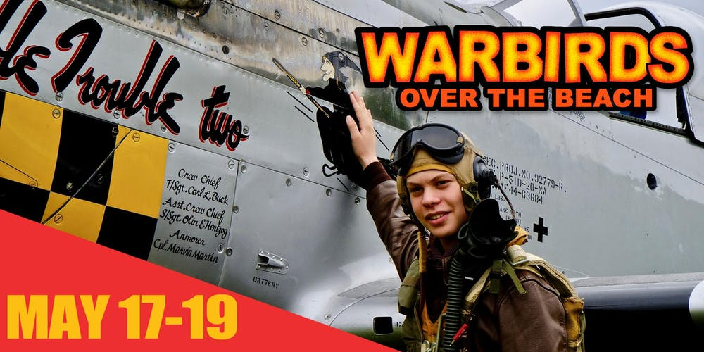 Image result for warbirds over the beach 2019