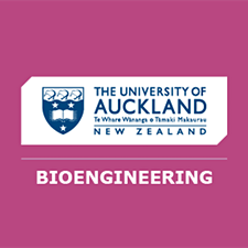 Auckland Bioengineering Institute - University of Auckland logo