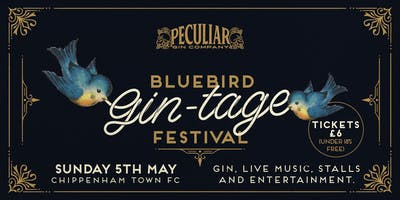 Bluebird Gin-tage Afternoon Festival