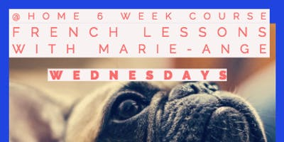 6wk Beginners French Course
