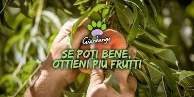 Se poti bene, ottieni più frutti