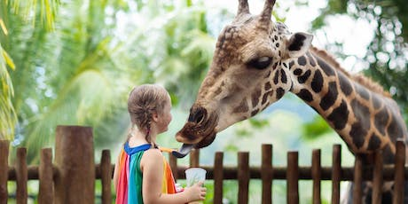 Animal Cognition at the Zoo: How the Partnership between Florida Tech and Brevard Zoo Is Furthering Science and Animal Wellness tickets