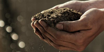 Garden Workshop Series - 3 Soil & Composting