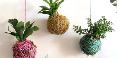 SJ Creators - Create a Kokedama succulent ball