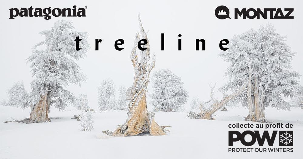 Projection Treeline