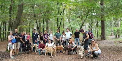 Passeggiata a 6 zampe - Un parco a misura di cane