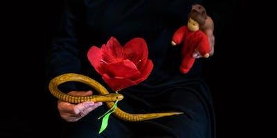 Die Blume Tulipan
