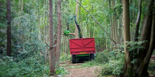 Basic Woodland Management at Hartshill Hayes Country Park