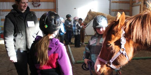 Skills for Life Taught by a Horse: Day Camp