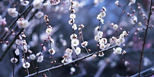 Winter Floral Workshop