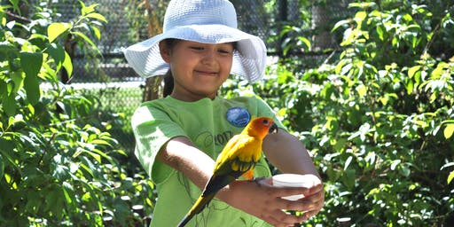 1st-2nd Avian Adventure Summer Camps: June 17-21