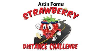 SDC 2020 (Strawberry Distance Challenge)