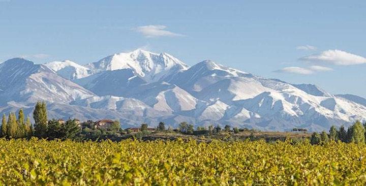 Image pour Je découvre les vins du Chili et d'Argentine