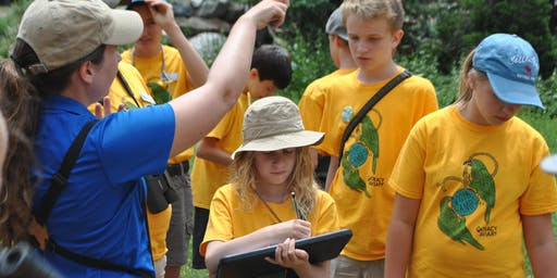 6th-8th Avian Adventure Summer Camps: July 29-August 2