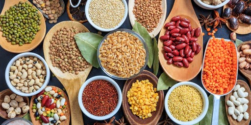 Exploring Plant-Based Proteins