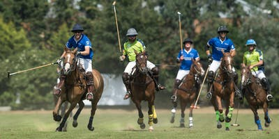 Cheval Cup