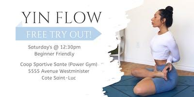 Free Yin Yoga Flow (Beginner Friendly)