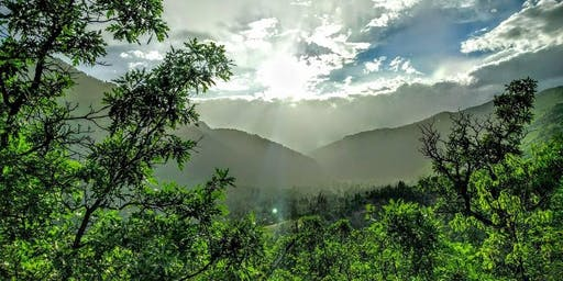 Solstice Meditation & Nature Immersion