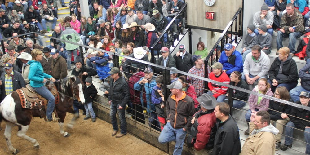 Day After Thanksgiving Horse Sale Tickets, Fri, Nov 29, 2019
