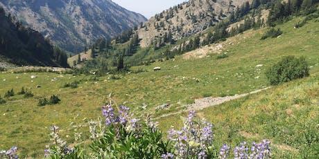 Utah Master Naturalist Mountain Adventures Course - Stokes Nature Center tickets