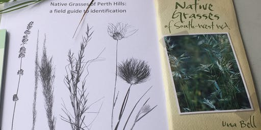 Native Grasses With Una