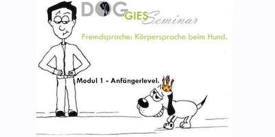 "DOGGIES Seminar: \""Körpersprache beim Hund\"", Modul 1 (Anfängerlevel)"