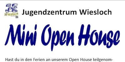 Mini Open House