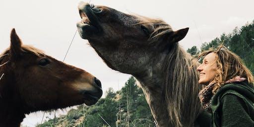 Cantant entre cavalls lliures /Cantando entre caballos libres