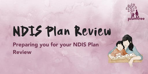 NDIS Plan Review