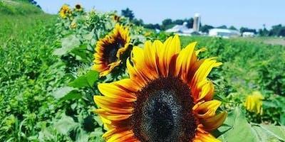 July DIY Pick Your Own Flowers & Arranging Workshop
