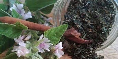 Growing & Using Medicinal Herbs