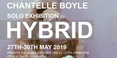 Chantelle Boyle -Hybrid Solo Exhibition