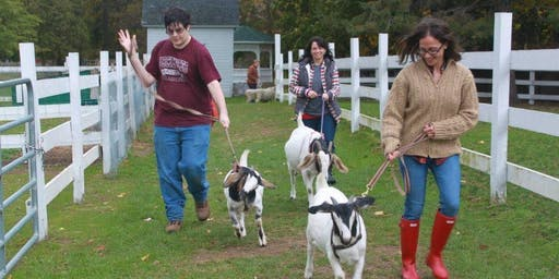 Adult Farm Camp