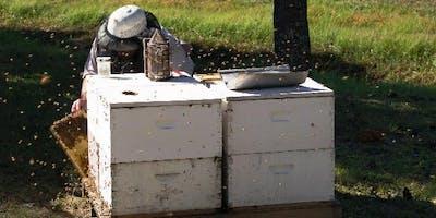 Beginning Farmer Workshop - Beekeeping as a Cottage Business