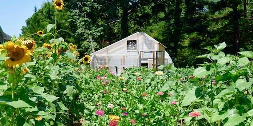 Rain Gardens and Water Harvesting