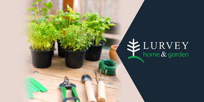 CLASS: Plant Your Vegetable and Herb Garden NOW!
