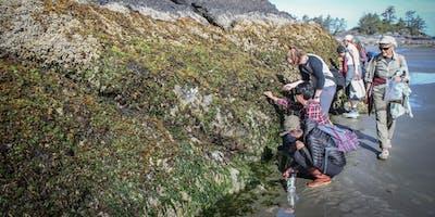 Seaweed Fest Tofino