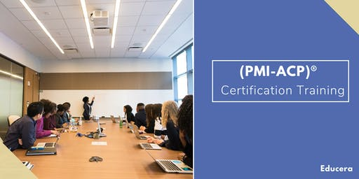 PMI ACP Certification Training in Charlottesville, VA