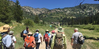 Utah Master Naturalist Mountain Adventures Course - Cottonwood Canyons, Sandy