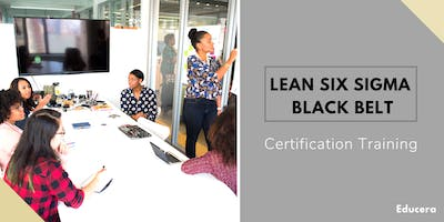 Lean Six Sigma Black Belt (LSSBB) Certification Training in Lexington, KY