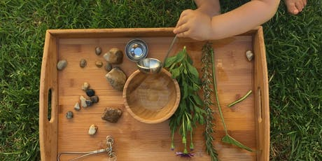 Wild Tots Nature Play for 1- 4 year olds - Fun with Nature - Plant 4 Bowden tickets