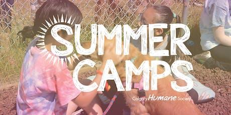 Pets 101 August 6-9 Grades 1-3 tickets