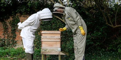 The Beekeepers Year: Aprils Practical