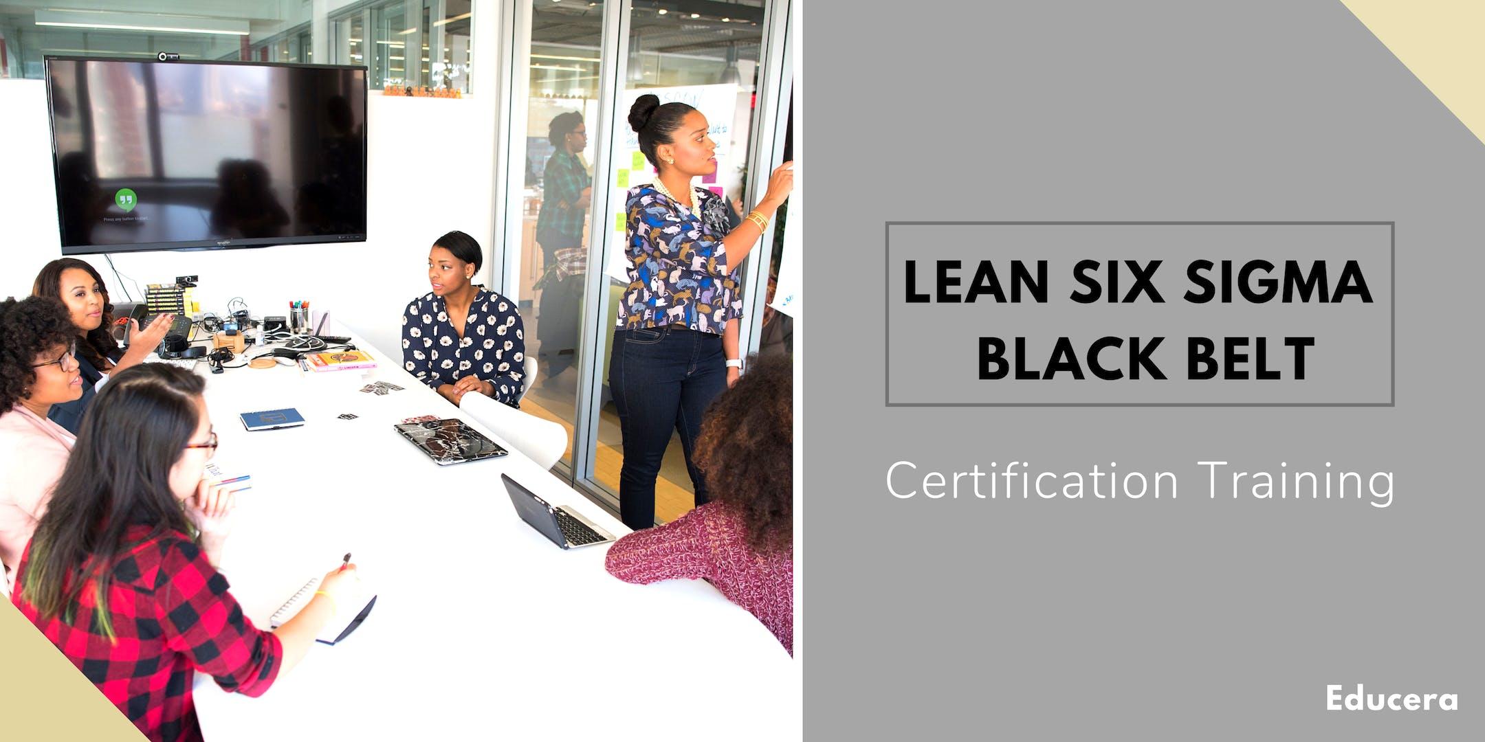 Lean Six Sigma Black Belt (LSSBB) Certification Training in Cumberland, MD