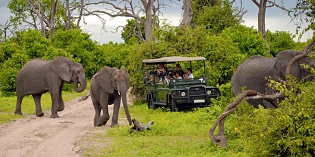 Go Touch Down Travel - 8-Day Adventure & Safari Tour tickets