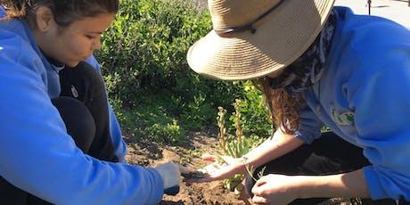 Redondo Beach Bluffs Habitat Restoration Volunteer Days tickets