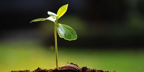 Plant Propagation Course tickets